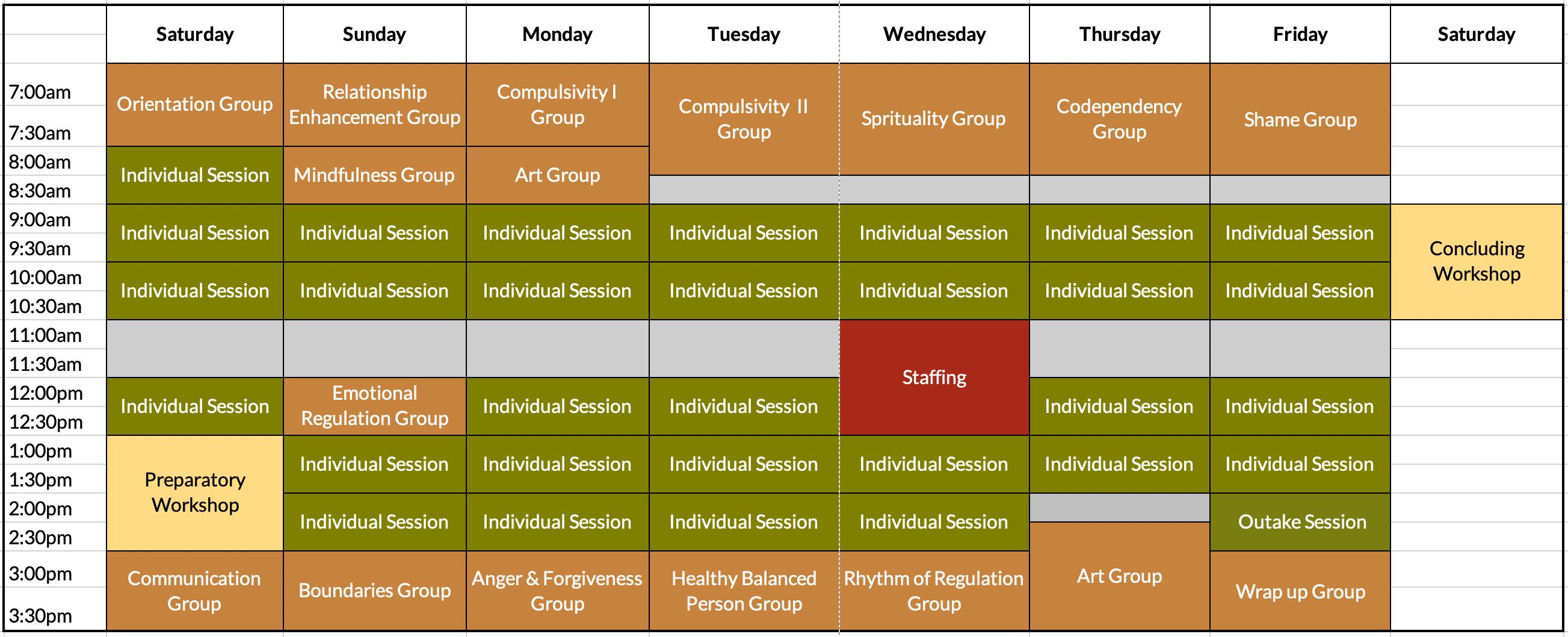 PCS Telemental Intensive Program Schedule